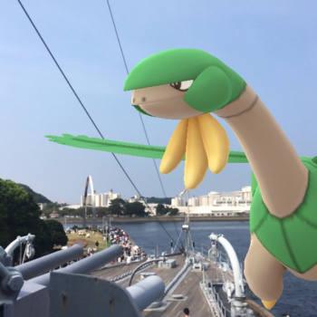 Como conseguir a Tropius en Pokémon Go