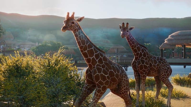 Jirafas de planet zoo